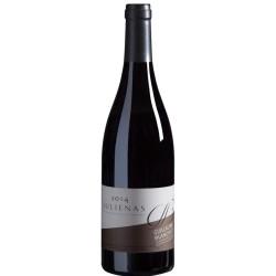 Vin rouge Juliénas Domaine Guillaume BLANCHET 2015